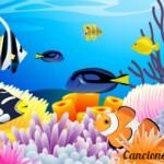 Los peces en el rio (letra)